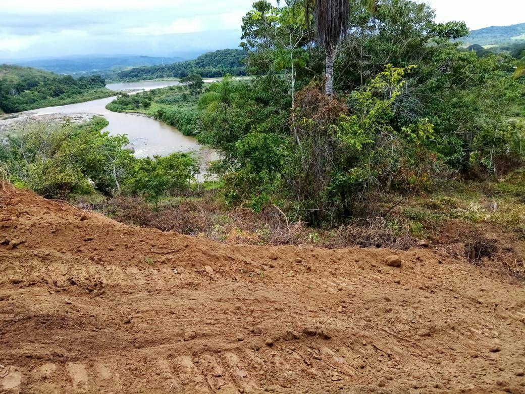 COSTA RICA. Usurpadores invaden la recuperación de territorio ancestral Crun Shurin y amenazan de muerte a recuperadorxs