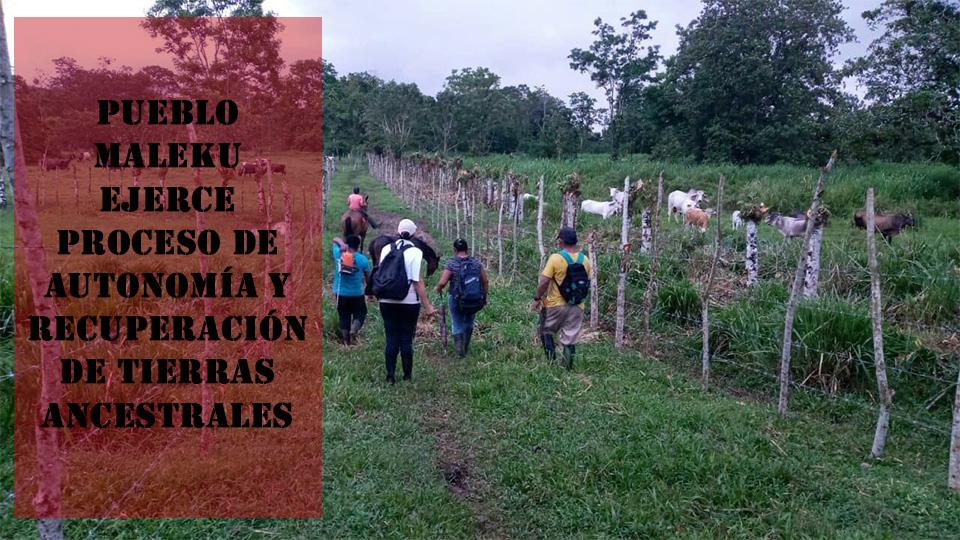 COSTA RICA. Pueblo Maleku ejerce proceso de autonomía y recuperación de tierras