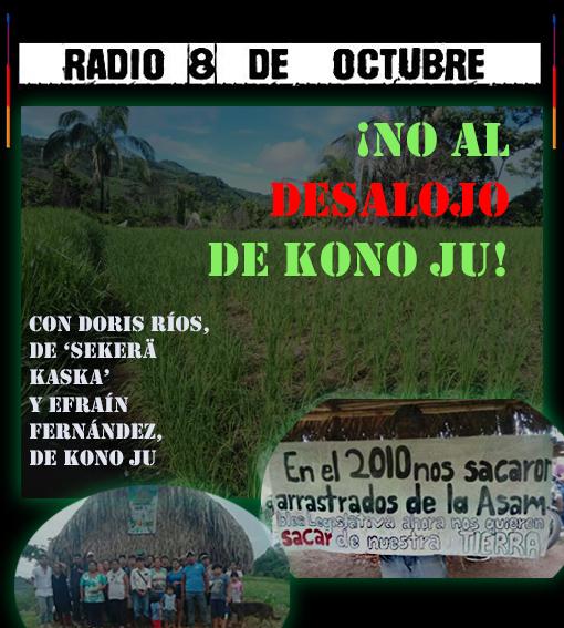 COSTA RICA. ¡No al desalojo de Kono Ju! (Entrevista radial)